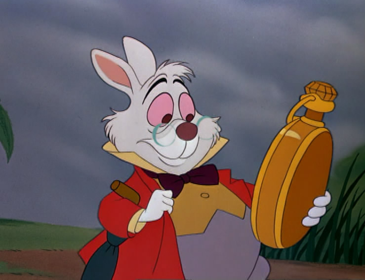 RabbitTime